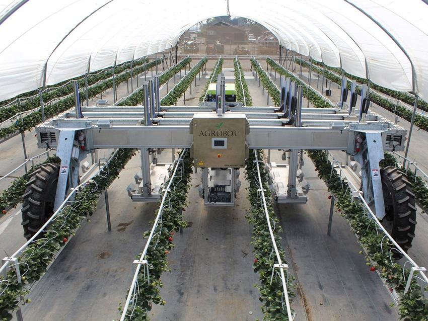 Tarımı Bütünüyle Değiştirecek Olan 9 Robot